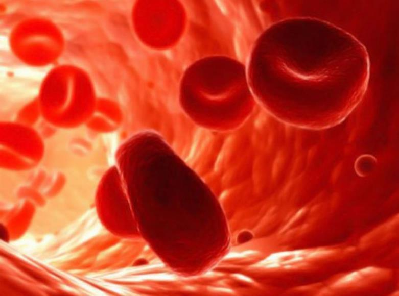 Причини підвищення рівня лейкоцитів