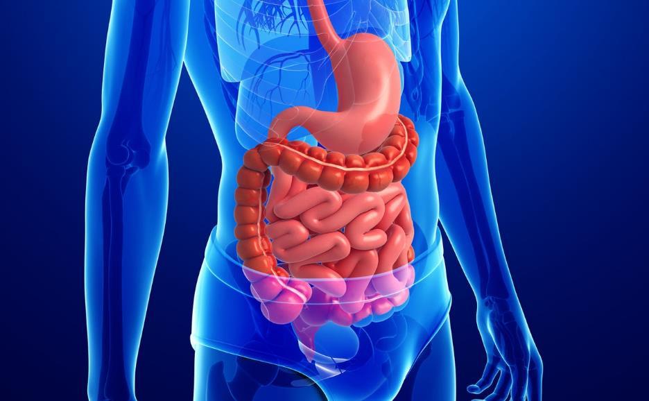 Що робити якщо з'явилися гази в кишечнику