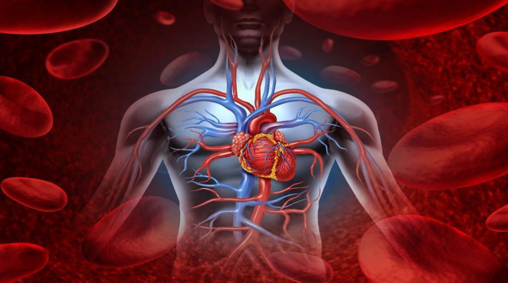 Аневризма серця - причини та наслідки