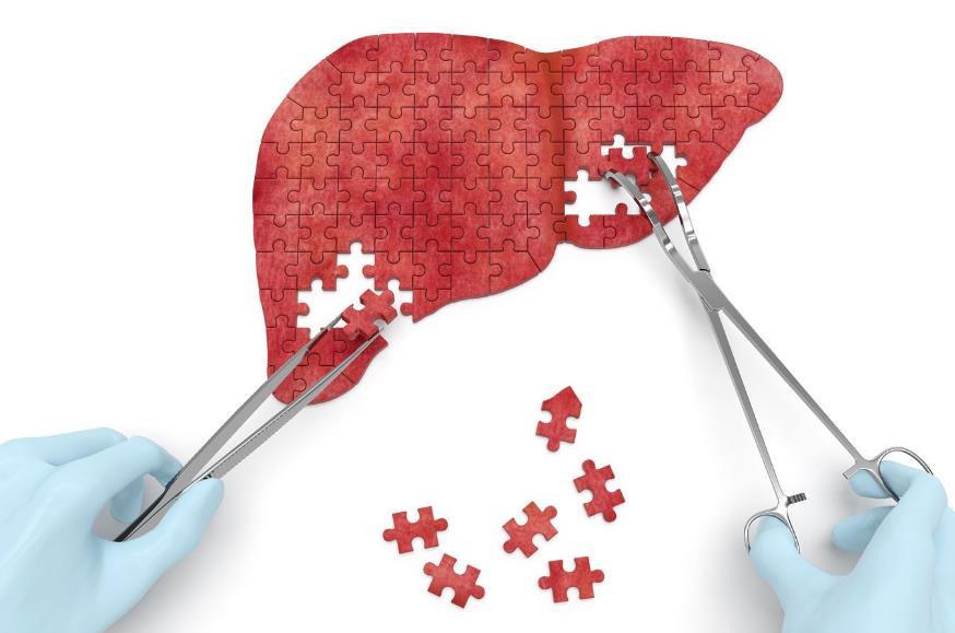 Некроз печінки: симптоми, причини
