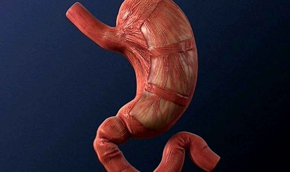 Атрофічний гастрит: симптоми і лікування