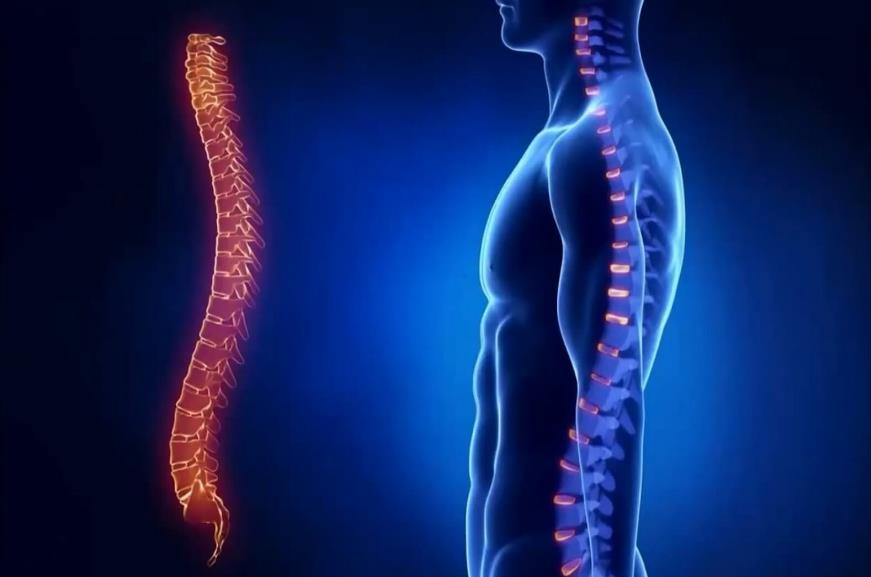 Чому болить хребет?