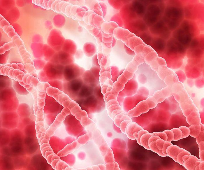 Гемобластози: класифікація, симптоми