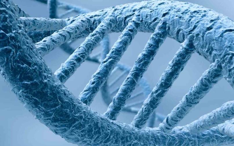 Хвороба Гоше: симптоми та наслідки генетичної аномалії