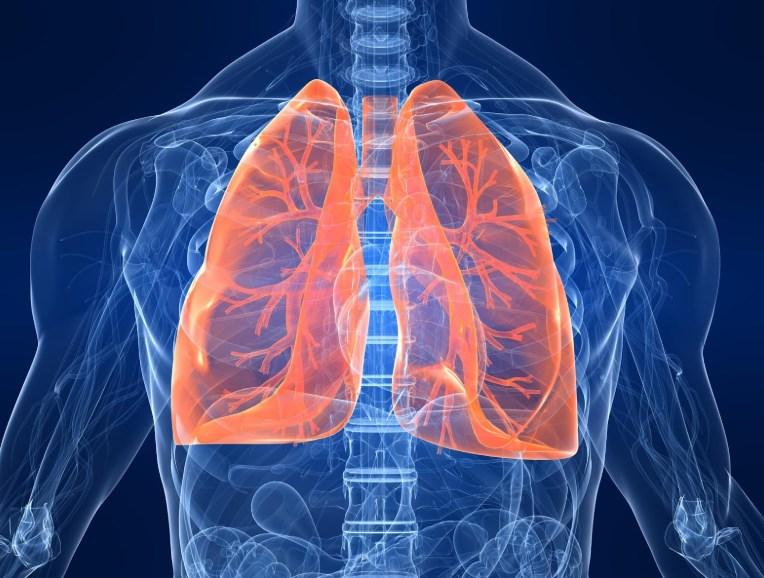 Астма - Хвороба дихальної системи