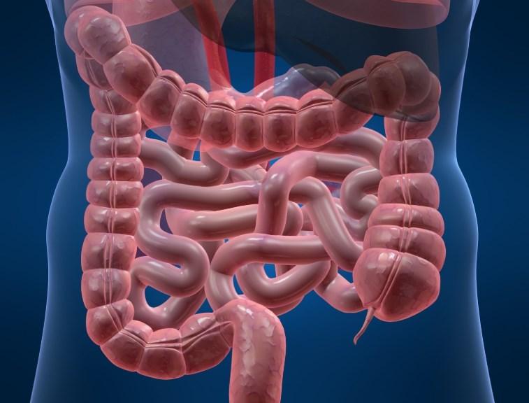 Хвороба Гіршпрунга - симптоми, лікування