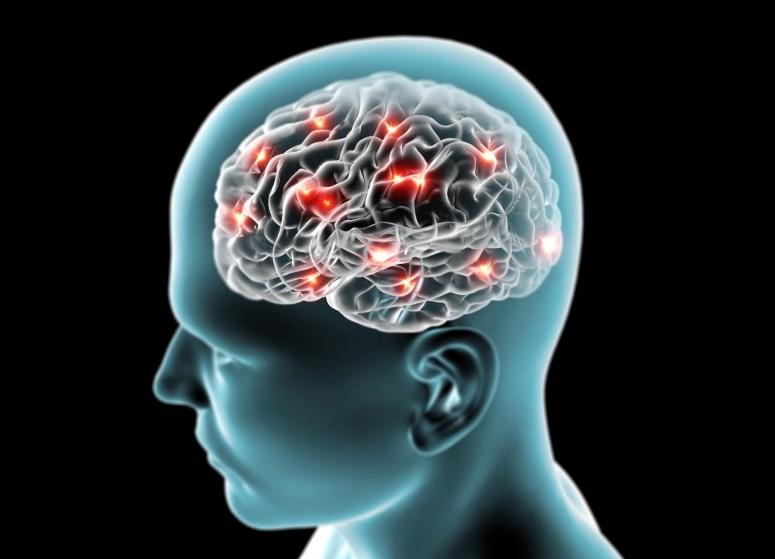 Хвороба Німана – Піка : Хвороби обміну ліпідів