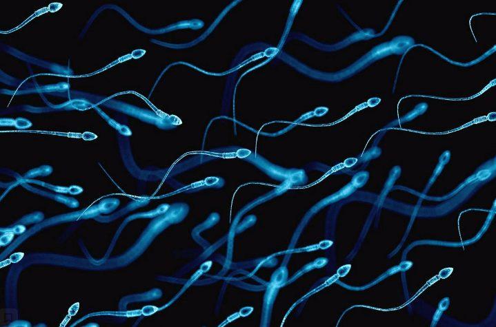 Чи лікується азооспермія?