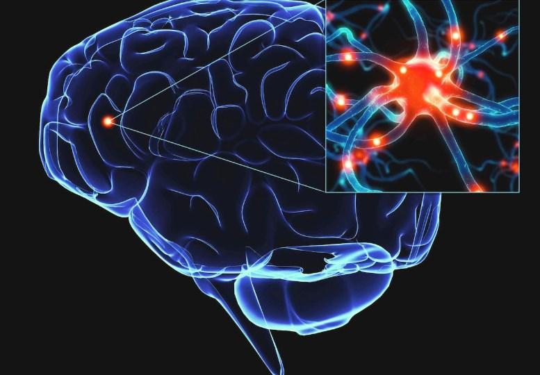 Хвороба Паркінсона - симптоми та причини захворювання