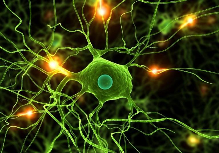 Нейрони в хворобі Паркінсона