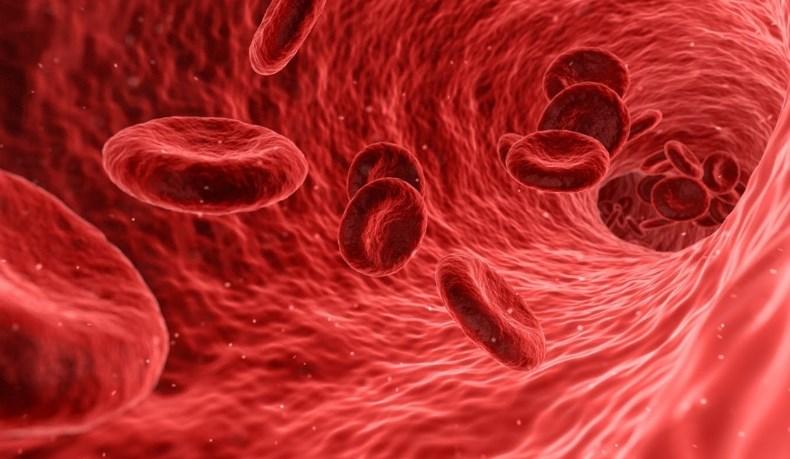 Хвороба Віллебранда - Гематологія і онкологія