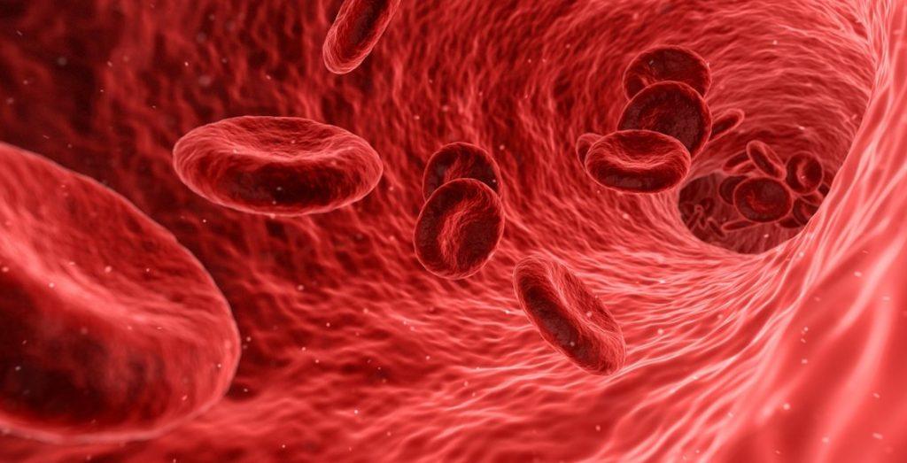 Анемія. Види анемії