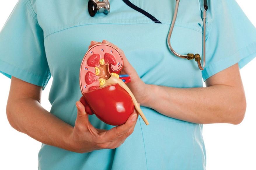 Аневризма ниркової артерії