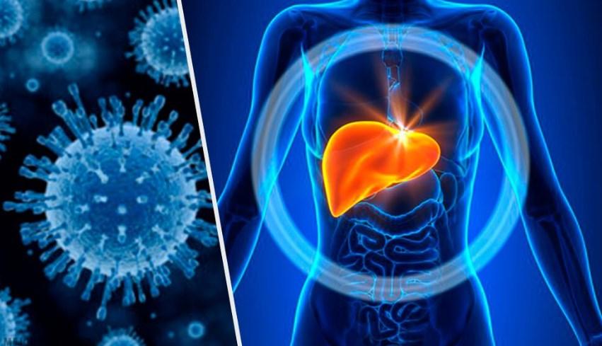 Гепатит E - симптоми, лікування, форми, причини