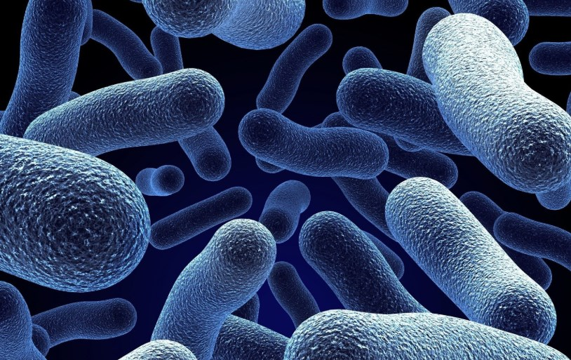 Внутрішньолікарняна інфекція, причини виникнення та профілактика