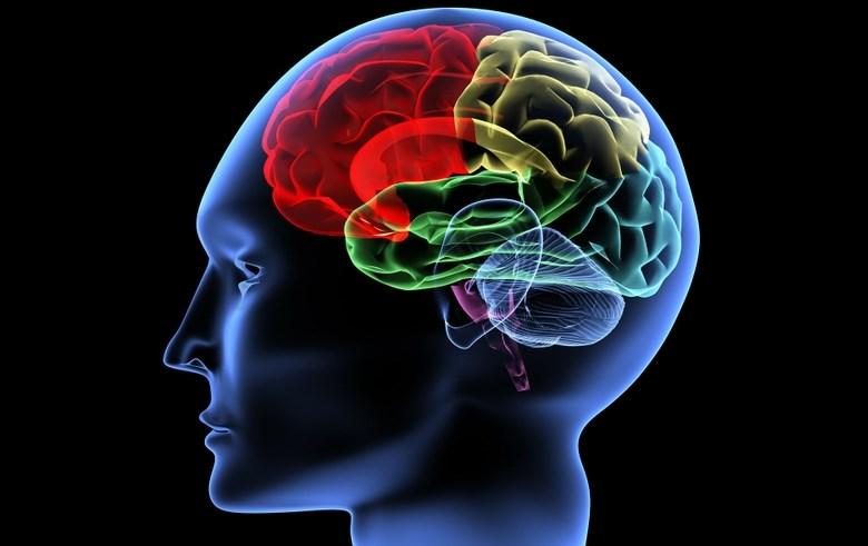 Атрофія головного мозку: причини, симптоми, лікування