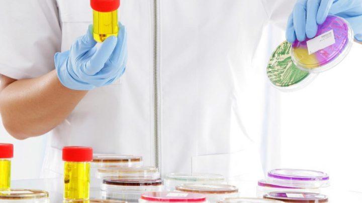 Гемоглобінурія: причини захворювання, основні симптоми, лікування і профілактика