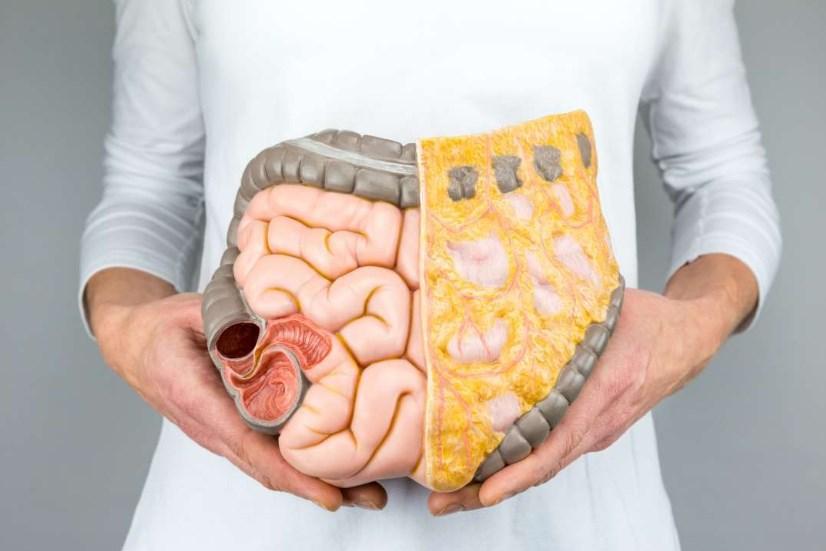 Випадання прямої кишки у дітей: причини, симптоми