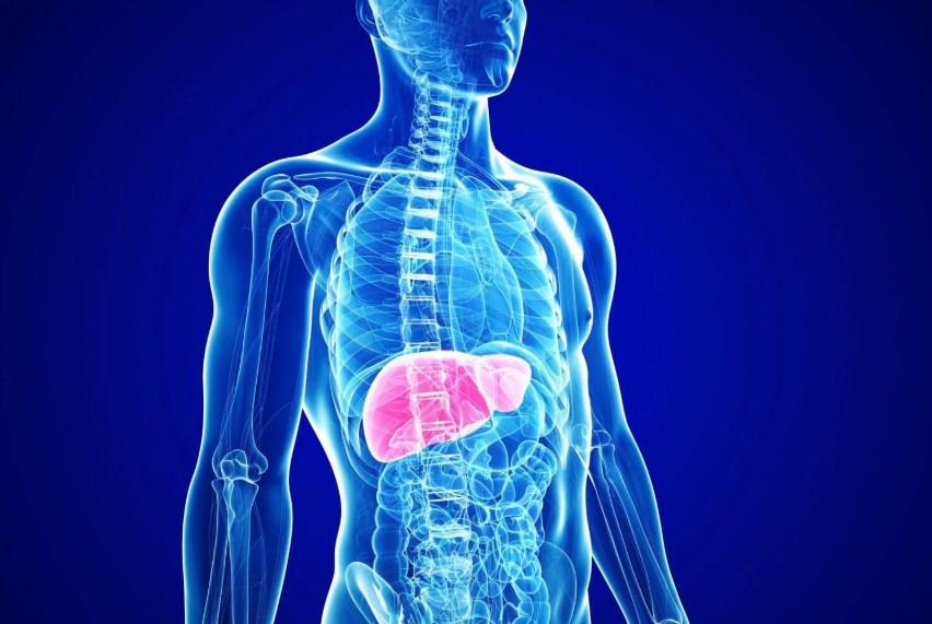Сучасні підходи до діагностики та лікування автоімунного гепатиту