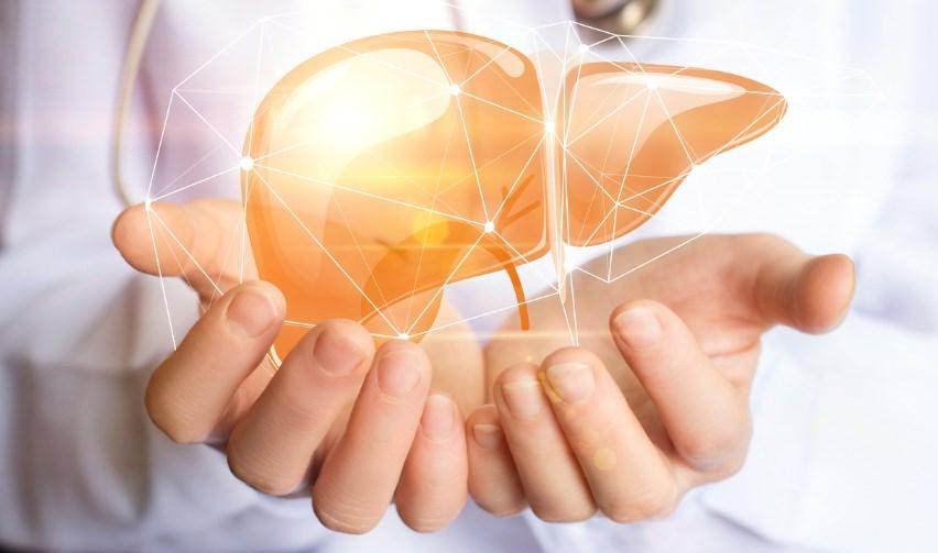 Гепатоцеллюлярна карцинома - причини, симптоми, діагностика