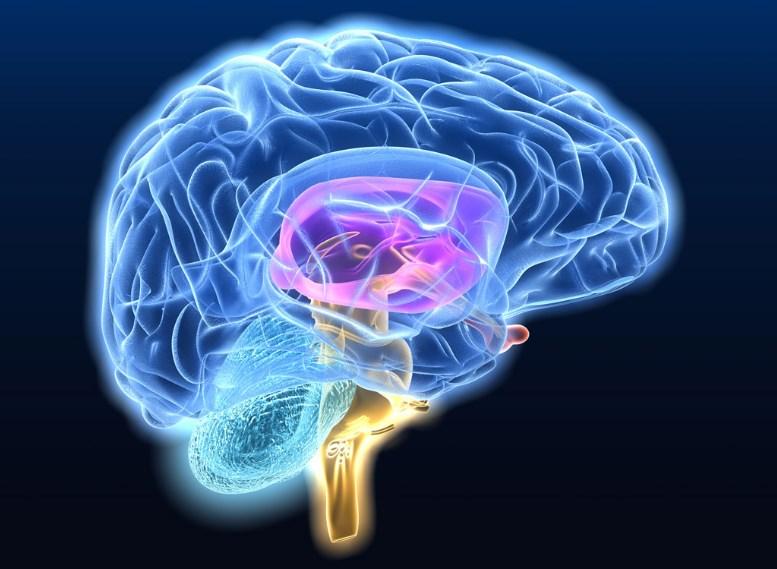 Гліома головного мозку діагностика і лікування гліоми