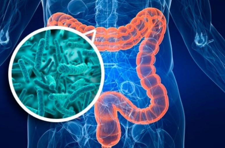 Чому виникає дисбактеріоз кишечника