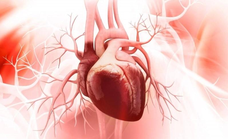Дилатаційна кардіоміопатія: причини, симптоми, діагностика