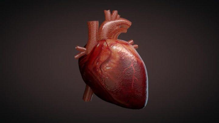Легеневе серце: причини захворювання, основні симптоми, лікування і профілактика