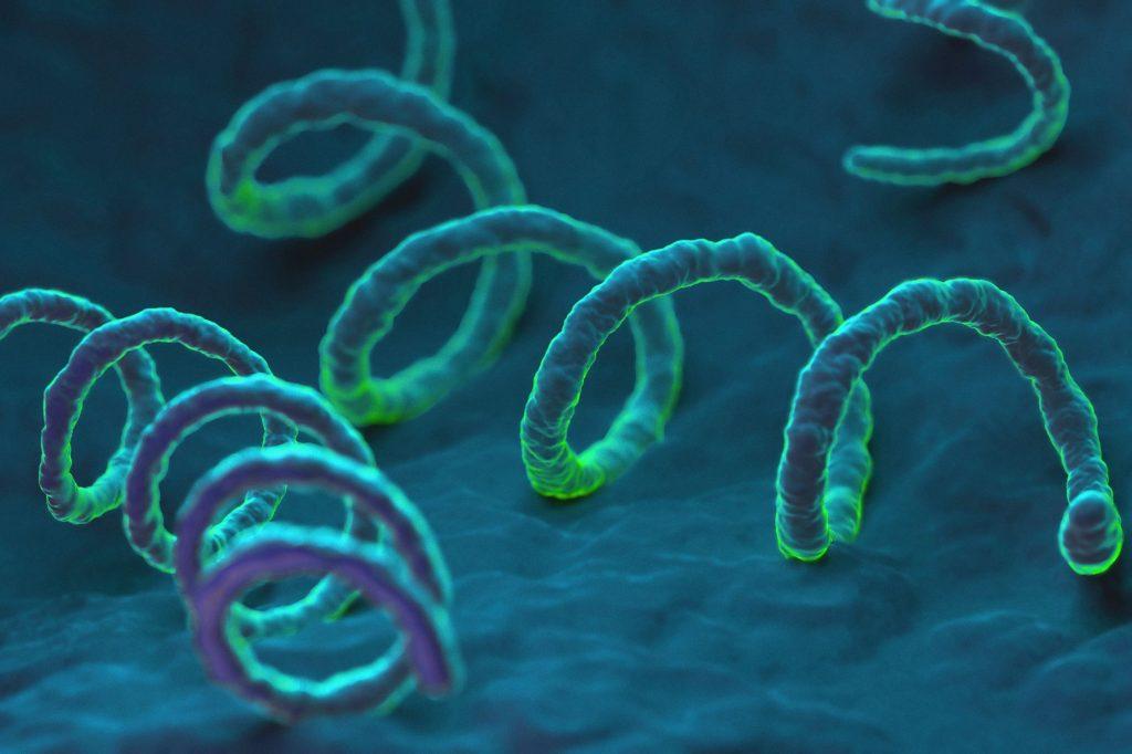 Нейросифилис: причини, симптоми, діагностика, лікування