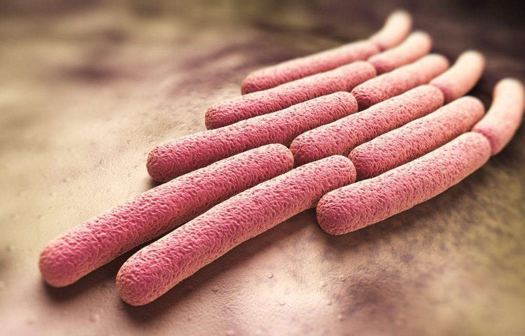 Міокардит: причини захворювання  і профілактика