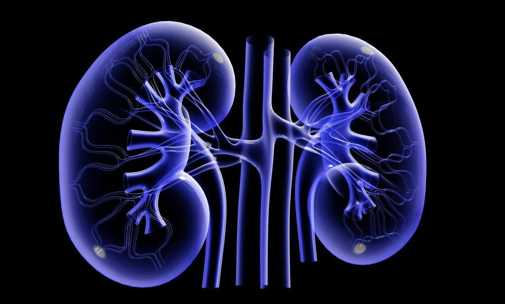 Гострий гломерулонефрит: причини захворювання, основні симптоми, лікування і профілактика