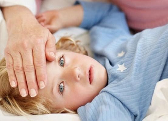 Омська геморагічна лихоманка: причини захворювання, основні симптоми, лікування і профілактика