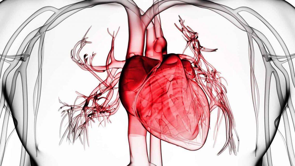 Ексудативний перикардит: причини захворювання, основні симптоми, лікування і профілактика
