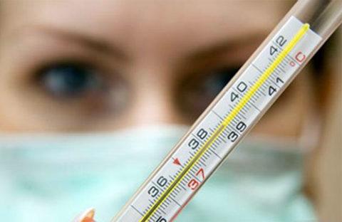 Лихоманка паппатачі: причини захворювання, основні симптоми, лікування і профілактика