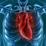 Гнійний перикардит: причини захворювання, основні симптоми, лікування і профілактика