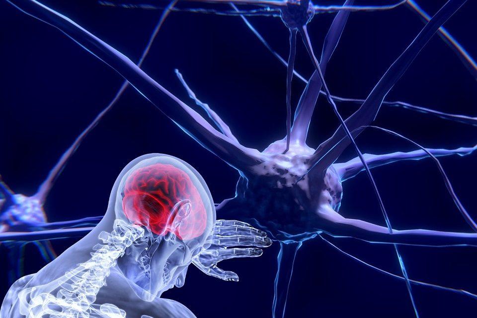 Енцефалопатія: причини захворювання, основні симптоми, лікування і профілактика