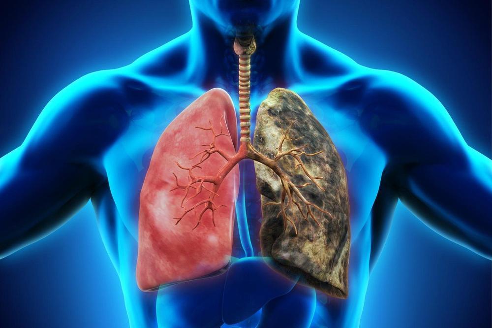 Захворювання, лікування та профілактика дихальної системи