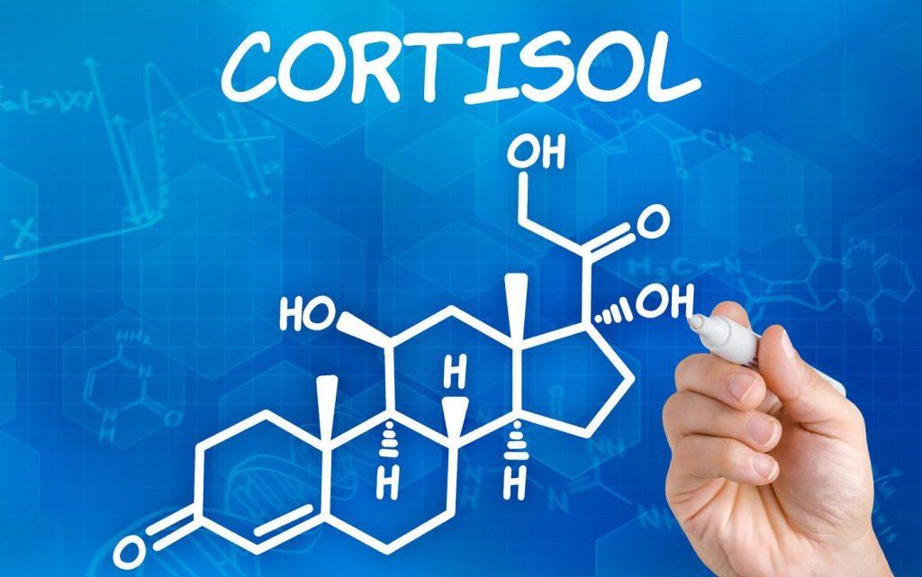 Як відрегулювати рівень кортизолу в крові