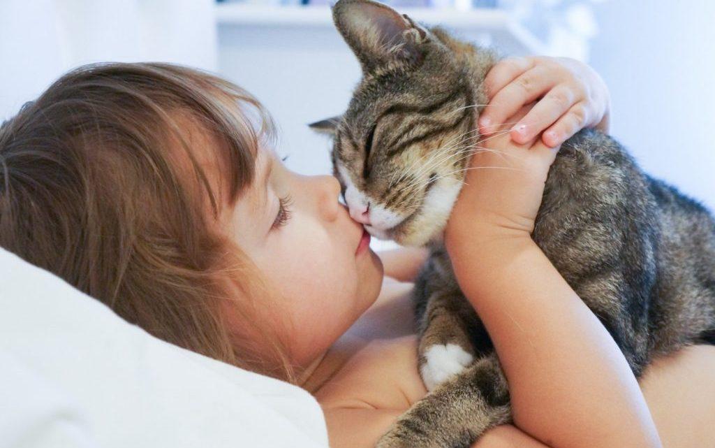 Бруцельоз у дітей: причини захворювання, основні симптоми, лікування і профілактика