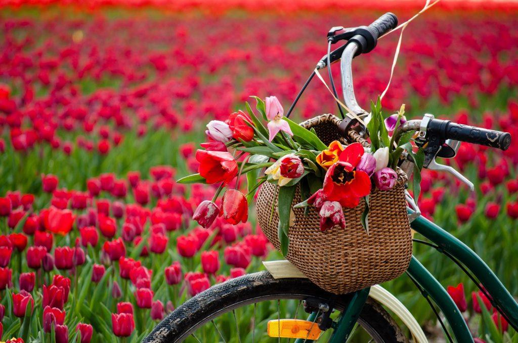 Найчастіші весняні захворювання