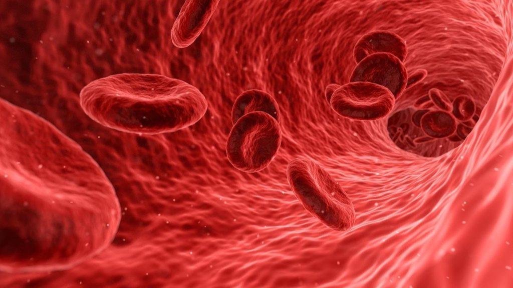 Гемофілія А і гемофілія В (хвороба Крістмас)