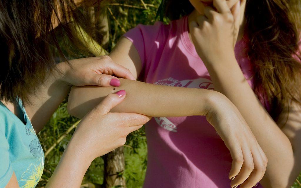 Бабезиоз: Причини, Симптоми, Лікування