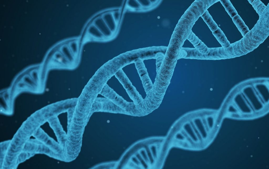 Хвороби, що передаються у спадок по чоловічій або жіночій лінії