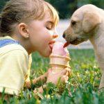 Літо: загострення хронічних захворювань