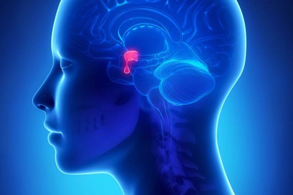 Гиперпролактинемия - симптоми, причини і лікування