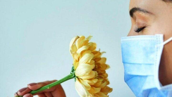 Порушення і втрата смаку: появи, при яких захворюваннях виникає, діагностика і способи лікування